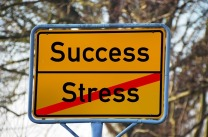 stress success